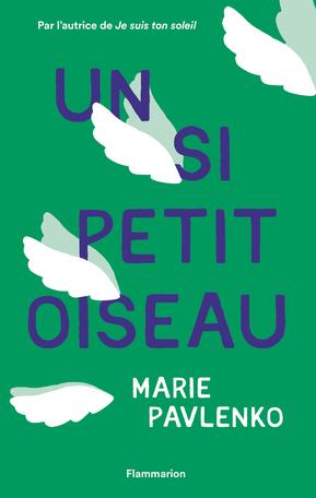 Un si petit oiseau de Marie Pavlenko - Editions Flammarion Jeunesse