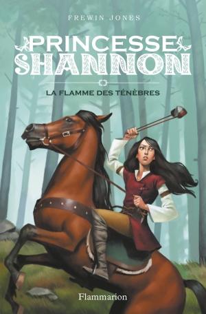 Princesse Shannon Tome 3 - La Flamme des ténèbres 2